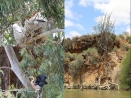 Misverstand Dam - Jan 2013