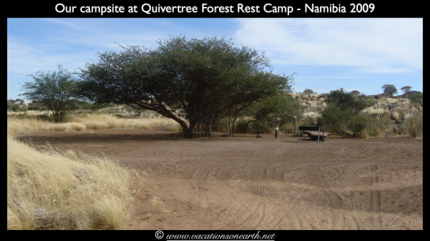 Namibia 2009 - Quivertree Forest .023