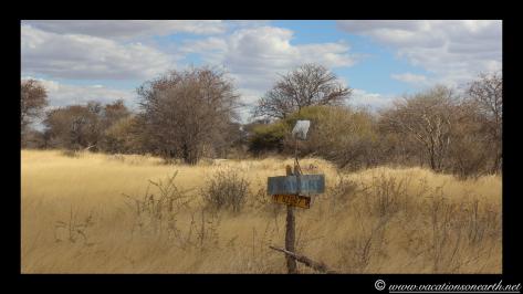 Namibia 2013 - Harnas to Tsumkwe road trip.018