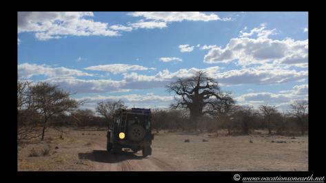 Namibia 2013 - Harnas to Tsumkwe road trip.024