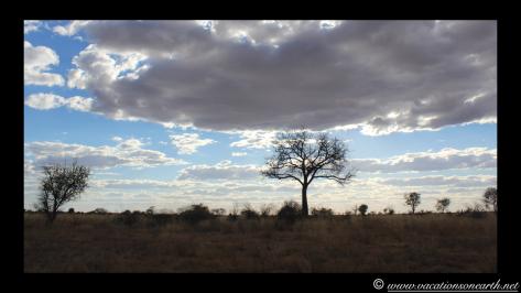 Namibia 2013 - Harnas to Tsumkwe road trip.028