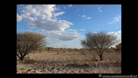 Namibia 2013 - Harnas to Tsumkwe road trip.034
