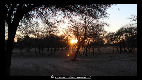 Namibia 2013 - Harnas Wildlife Foundation .008