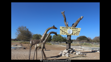 Namibia 2013 - Harnas Wildlife Foundation .029