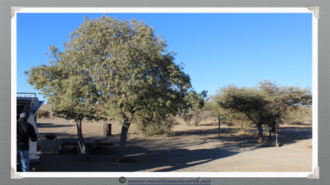 Namibia 2013 - Where we camped at Quivertree Forest Rest Camp (August)