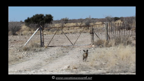 Namibia 2013 - Road from Quivertree Forest to Harnas Wildlife Foundation.001