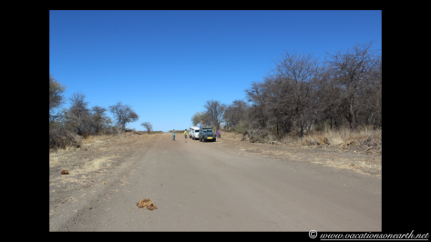 Namibia 2013 - Khaudum National Park.005