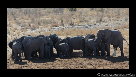 Namibia 2013 - Khaudum National Park.020