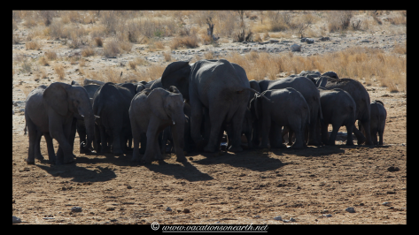 Namibia 2013 - Khaudum National Park 2.001