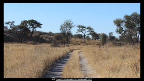 Namibia 2013 - Khaudum National Park 2.009
