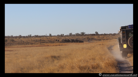 Namibia 2013 - Khaudum National Park 2.010