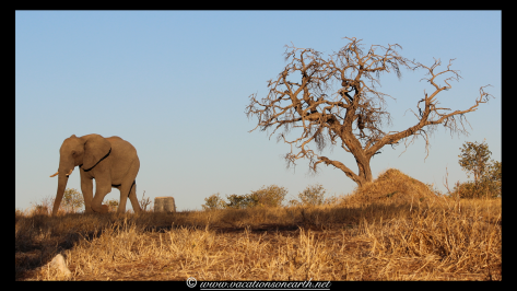 Namibia 2013 - Khaudum National Park 2.014