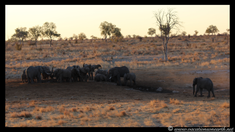 Namibia 2013 - Khaudum National Park 2.019