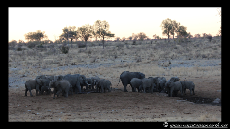 Namibia 2013 - Khaudum National Park 2.022