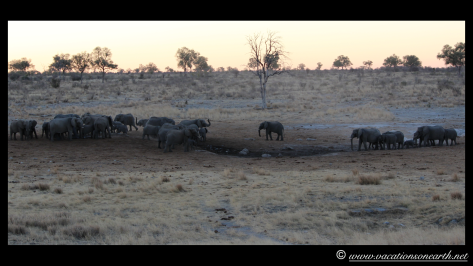 Namibia 2013 - Khaudum National Park 2.023
