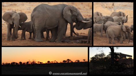 Namibia 2013 - Khaudum National Park 2.024