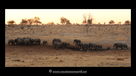 Namibia 2013 - Khaudum National Park 2.025