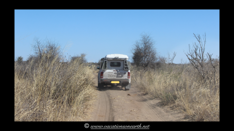 Namibia 2013 - Khaudum National Park 2.063