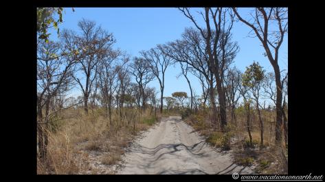 Namibia 2013 - Khaudum National Park to Ngepi.019