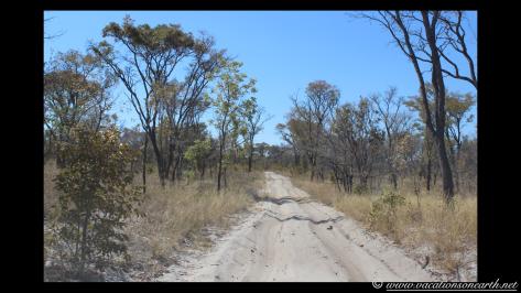 Namibia 2013 - Khaudum National Park to Ngepi.027