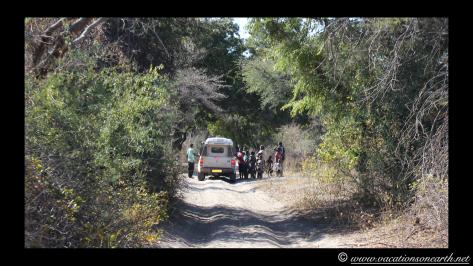 Namibia 2013 - Khaudum National Park to Ngepi.034
