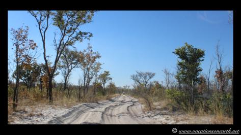 Namibia 2013 - Khaudum National Park to Ngepi.036