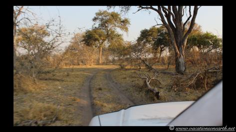 Namibia 2013 - Mamili:Nkasa Lupala National Park .031