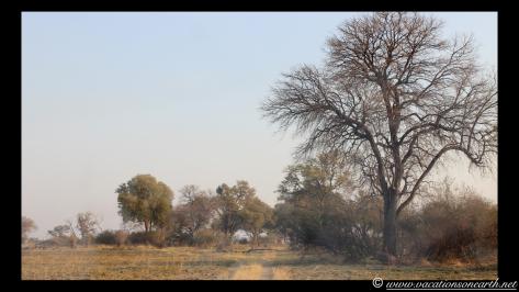 Namibia 2013 - Mamili:Nkasa Lupala National Park .032
