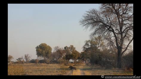 Namibia 2013 - Mamili:Nkasa Lupala National Park .033