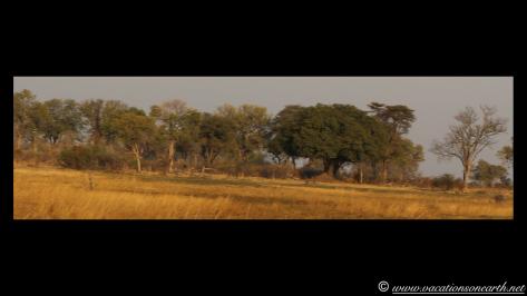 Namibia 2013 - Mamili:Nkasa Lupala National Park .035