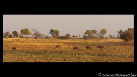 Namibia 2013 - Mamili:Nkasa Lupala National Park .036