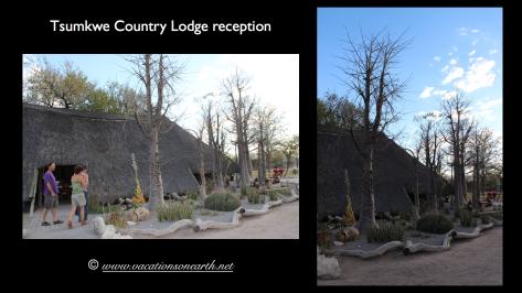 Namibia 2013 - Tsumkwe Country Lodge.003