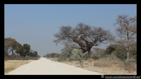 Namibia 2013 - Island View Lodge road to B8 Ngoma road, 13 Aug.003