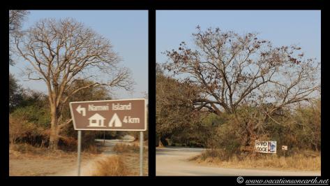 Namibia 2013 - Mamili National Park to Katima Mulilo.012