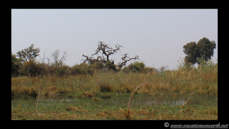 Namibia 2013 - Mamili (Nkasa Lupala) Mudumu National Park.005