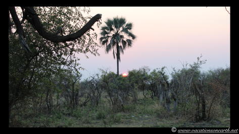 Namibia 2013 - Mamili (Nkasa Lupala) Mudumu National Park.012