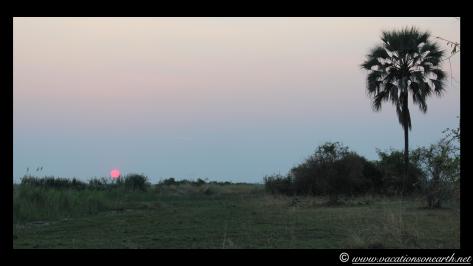Namibia 2013 - Mamili (Nkasa Lupala) Mudumu National Park.017