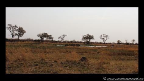 Namibia 2013 - Mamili (Nkasa Lupala) National Park.014