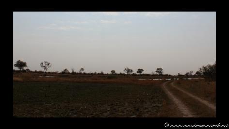 Namibia 2013 - Mamili (Nkasa Lupala) National Park.015