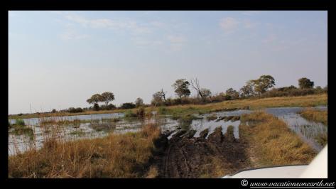 Namibia 2013 - Mamili (Nkasa Lupala) National Park.018