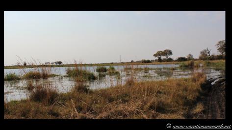 Namibia 2013 - Mamili (Nkasa Lupala) National Park.019