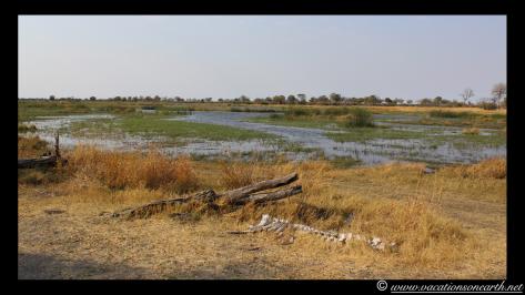 Namibia 2013 - Mamili (Nkasa Lupala) National Park.022