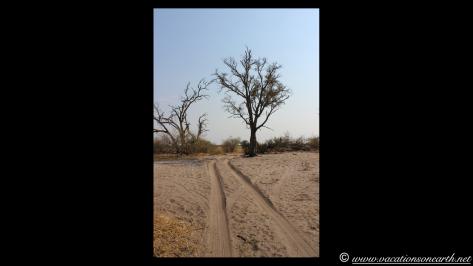 Namibia 2013 - Mamili (Nkasa Lupala) National Park.026