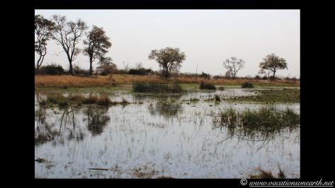 Namibia 2013 - Mamili (Nkasa Lupala) National Park.029