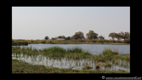 Namibia 2013 - Mamili (Nkasa Lupala) National Park.031