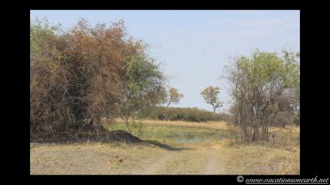 Namibia 2013 - Mamili (Nkasa Lupala) National Park.032