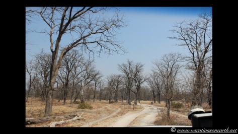 Namibia 2013 - Salambala and road to Ngoma Border.006