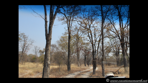 Namibia 2013 - Salambala and road to Ngoma Border.011
