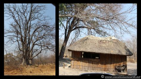 Namibia 2013 - Salambala and road to Ngoma Border.013