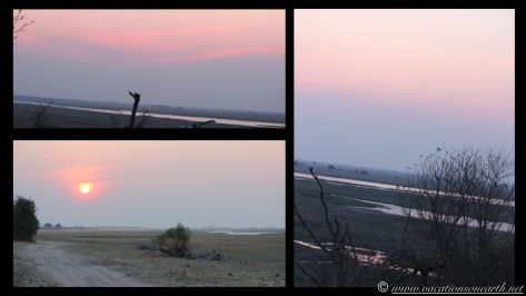 Namibia 2013 - Chobe National Park 3.042